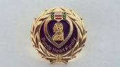 Purple Heart Family Lapel Pin